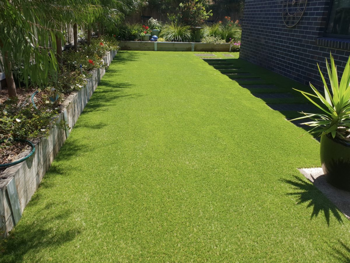 Geelong synthetic grass